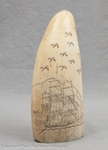 Antique Sperm Whale Tooth with Ship and Birds