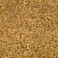245 Gold Casual Elegance Area Rug by Dalyn