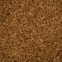 948 Bronze Casual Elegance Area Rug by Dalyn