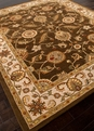 Mythos Maia MY01 Cocoa Brown Area Rug by Jaipur