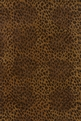 Serengeti SG-01 Cheetah Area Rug by Momeni