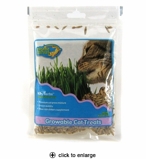 Cosmic Kitty Herbs 4 oz