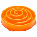 Kyjen Slo-Bowl Coral Slow Dog Feeder Orange