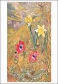 Anemones and Daffodils Small Boxed Cards