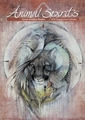 Animal Spirits: Susan Seddon Boulet 2016 Engagement Calendar