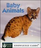 Baby Animals Knowledge Cards