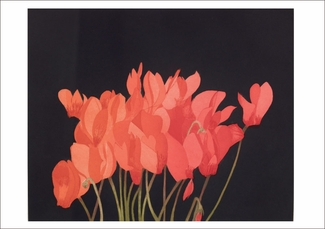 Beth Van Hoesen: Park Cyclamen Small Boxed Cards