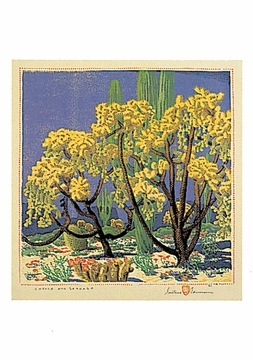 Cholla and Sahuaro Postcard