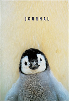 Emperor Penguin Chick Pocket Journal