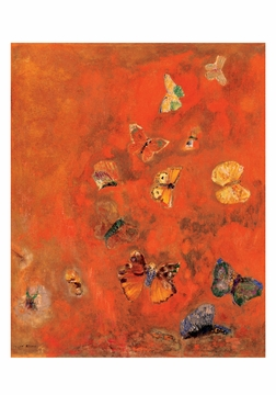 Evocation of Butterflies Small Boxed Cards