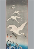 Five Egrets Descending in Snow Christmas Cards