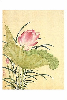 Flowers of the Twelve Months Lotus Magnet
