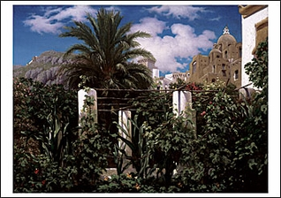 Garden of an Inn, Capri Notecard