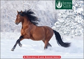 Horses of Winter Christmas Card Assortment