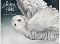 Jeannine Chappell: Snowy Owls Holiday Card Assortment