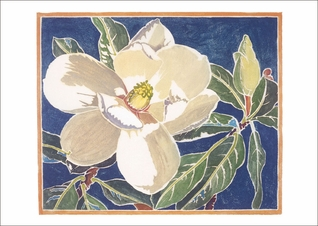 Magnolia Grandiflora Small Boxed Cards