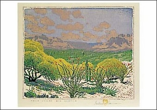 Palo Verde and Ocotea Postcard