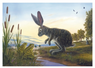 Robert Bissell's Rabbits Boxed Notecards