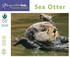Sea Otter 300-piece Jigsaw Puzzle