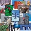 Sierra Club Christmas Card Blowout