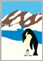 Susan Stockdale: Penguins Holiday Cards