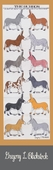 The Burros Bookmark