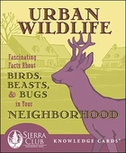 Urban Wildlife: Fascinating Facts About Birds, Beasts, and Bugs in Your Neighborhood Knowledge Cards