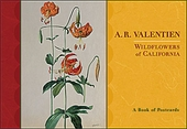 Wildflowers of California Book of Postcards