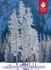 Winter Trees Holiday Card Assortment