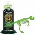 3D Dino Horizon T-rex Glow In The Dark Bones Skeleton Puzzle Kit