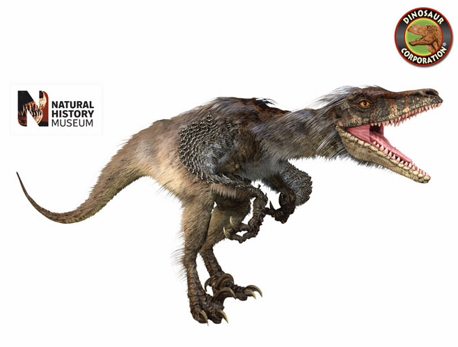 museum of natural history giant dinosaur raptor wall sticker giant triceratops dinosaur wall decals dinosaurs room