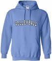 Carolina Blue Team Sport Printed Hooded Sweatshirt in 22 Sports
