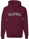 Maroon Team Sport Printed Hooded Sweatshirt in 22 Sports