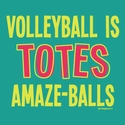 Volleyball Is Totes Amaze-Balls Design Aqua Jade T-Shirt