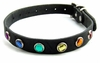 Leather Pet Collar with Rainbow Jewels  Small  8-12in