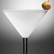 Iced Martini Glass Double-Wall Acrylic Re-Freezeable