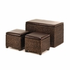 Woven Wicker Trunk and Ottomans  3pc Set   FREE SHIPPING