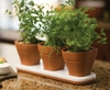 Silicone Convertible Herb Pots Set