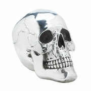 Silvery Smiling Skull