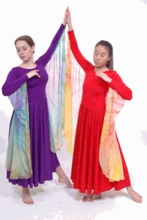 IN STOCK SPECIAL PRICE - Wings Aloft Dance Dress (SP WC WP D)