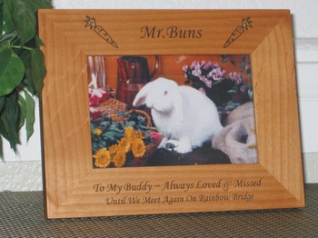 Bunny Picture Frame - Personalized Frame - Laser Engraved Carrots