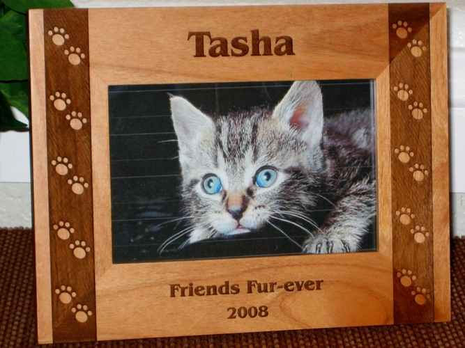Cat Pawprints Picture Frame - Personalized Frame - Laser Engraved Pawprints Side Boarder