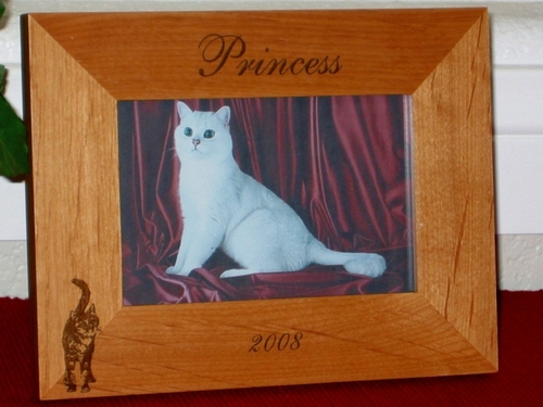 Cat Picture Frame - Personalized Frame - Laser Engraved Cat