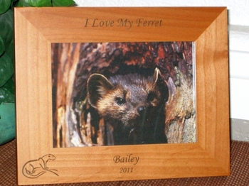 Ferret Picture Frame - Personalized Frame - Laser Engraved Ferret