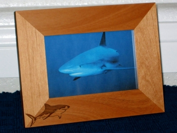 Great White Shark Picture Frame - Personalized Frame - Laser Engraved Great White Shark