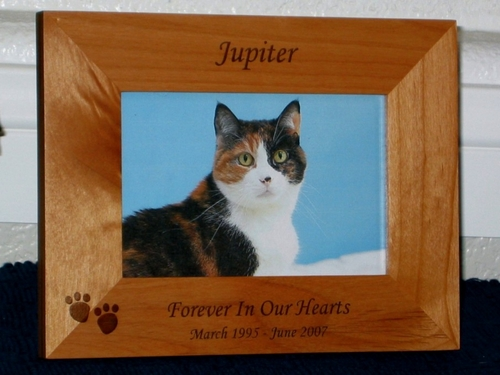 In Loving Memory Picture Frame - Personalized Frame - Laser Engraved Cat Pawprints