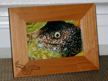Moray Eel Picture Frame - Personalized Frame - Laser Engraved Moray Eel