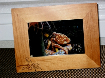 Octopus Picture Frame - Personalized Frame - Laser Engraved Octopus