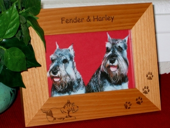 Schnauzer Picture Frame - Personalized Frame - Laser Engraved Schnauzer
