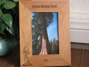 Sequoia Picture Frame - Personalized Frame - Laser Engraved Redwood Tree